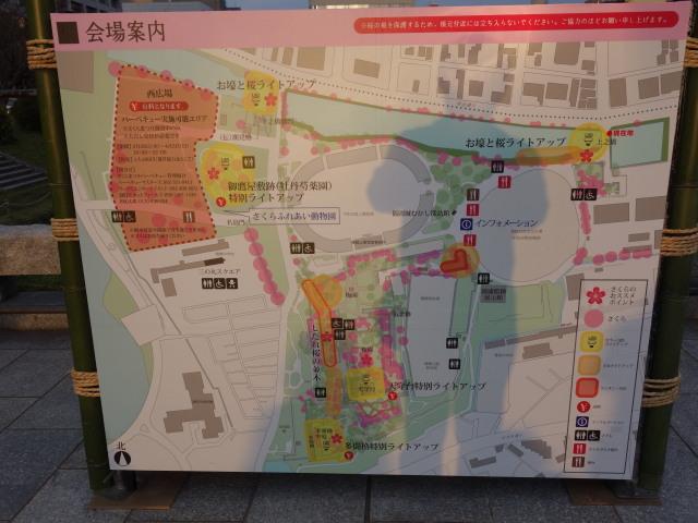 福岡城さくらまつり2015(夜桜)上之橋2