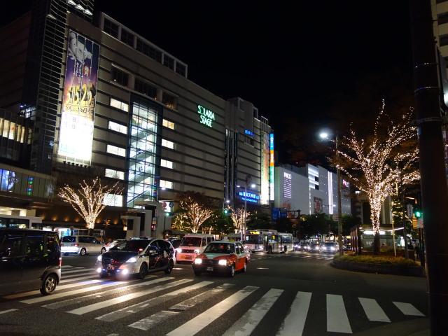 illumination-of-street-trees-%e8%a1%97%e8%b7%af%e6%a8%b9%e3%81%ae%e3%82%a4%e3%83%ab%e3%83%9f%e3%83%8d%e3%83%bc%e3%82%b7%e3%83%a7%e3%83%b34