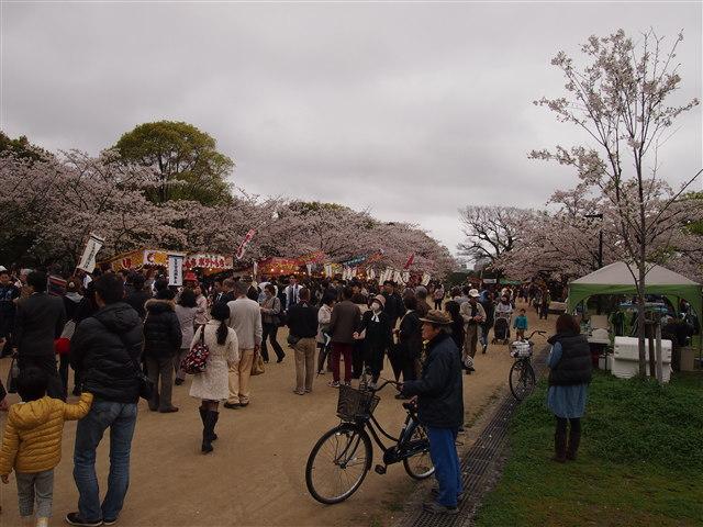 おおほりまつり2014-11