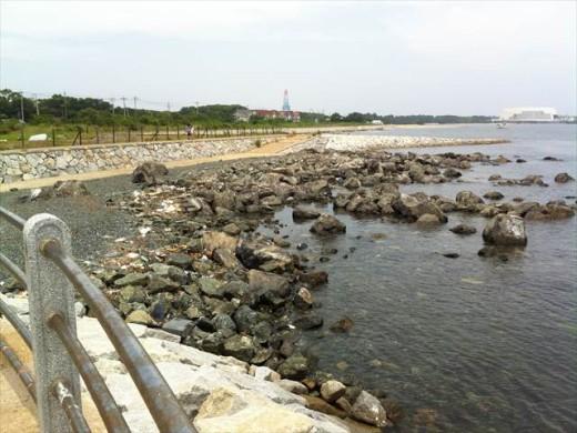 博多市営渡船 きんいん号16