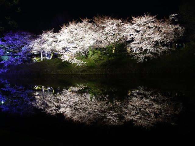 福岡城さくらまつり2015(夜桜)お堀3