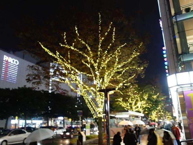 illumination-of-street-trees-%e8%a1%97%e8%b7%af%e6%a8%b9%e3%81%ae%e3%82%a4%e3%83%ab%e3%83%9f%e3%83%8d%e3%83%bc%e3%82%b7%e3%83%a7%e3%83%b31