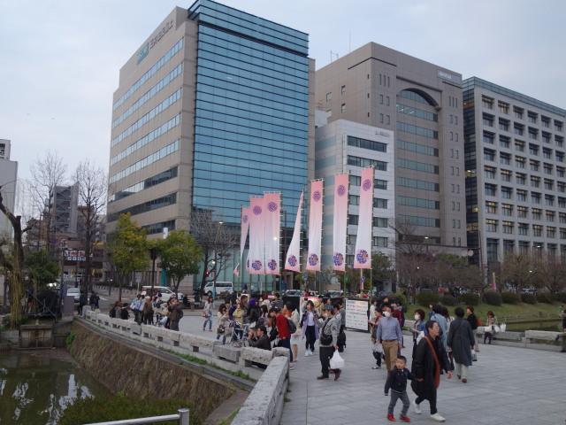 福岡城さくらまつり2015上之橋2