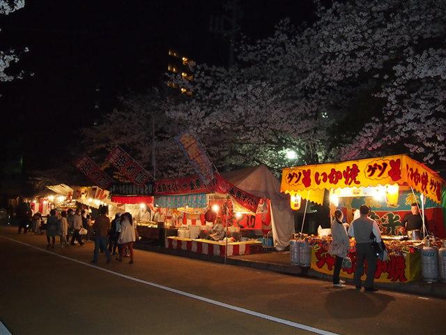 西公園桜2014-22