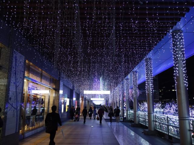 光の街・博多2015-上2