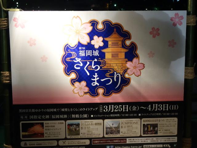 第7回 福岡城さくらまつり夜桜様子2