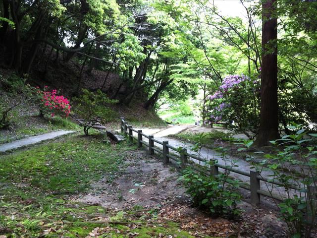 天拝山歴史自然公園10