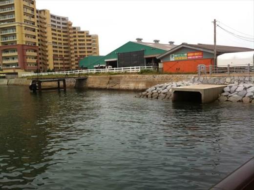 博多市営渡船 きんいん号11