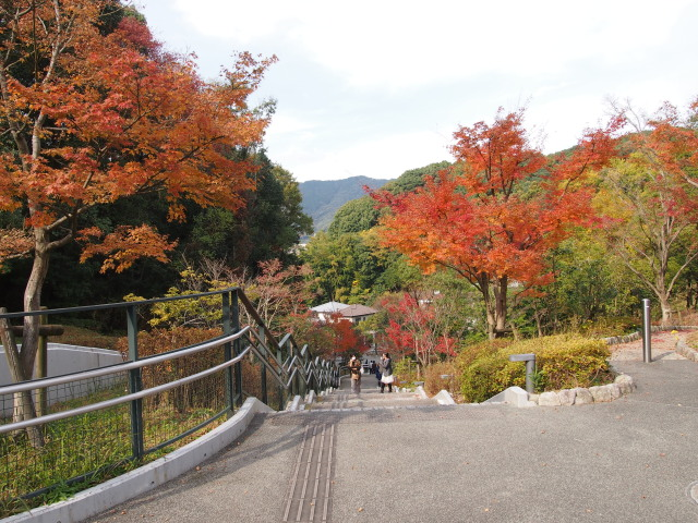 九州国立博物館18