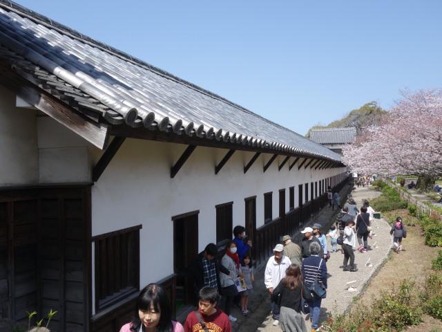 福岡城さくらまつり2015多聞櫓1