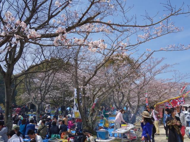 福岡城さくらまつり2015西広場2