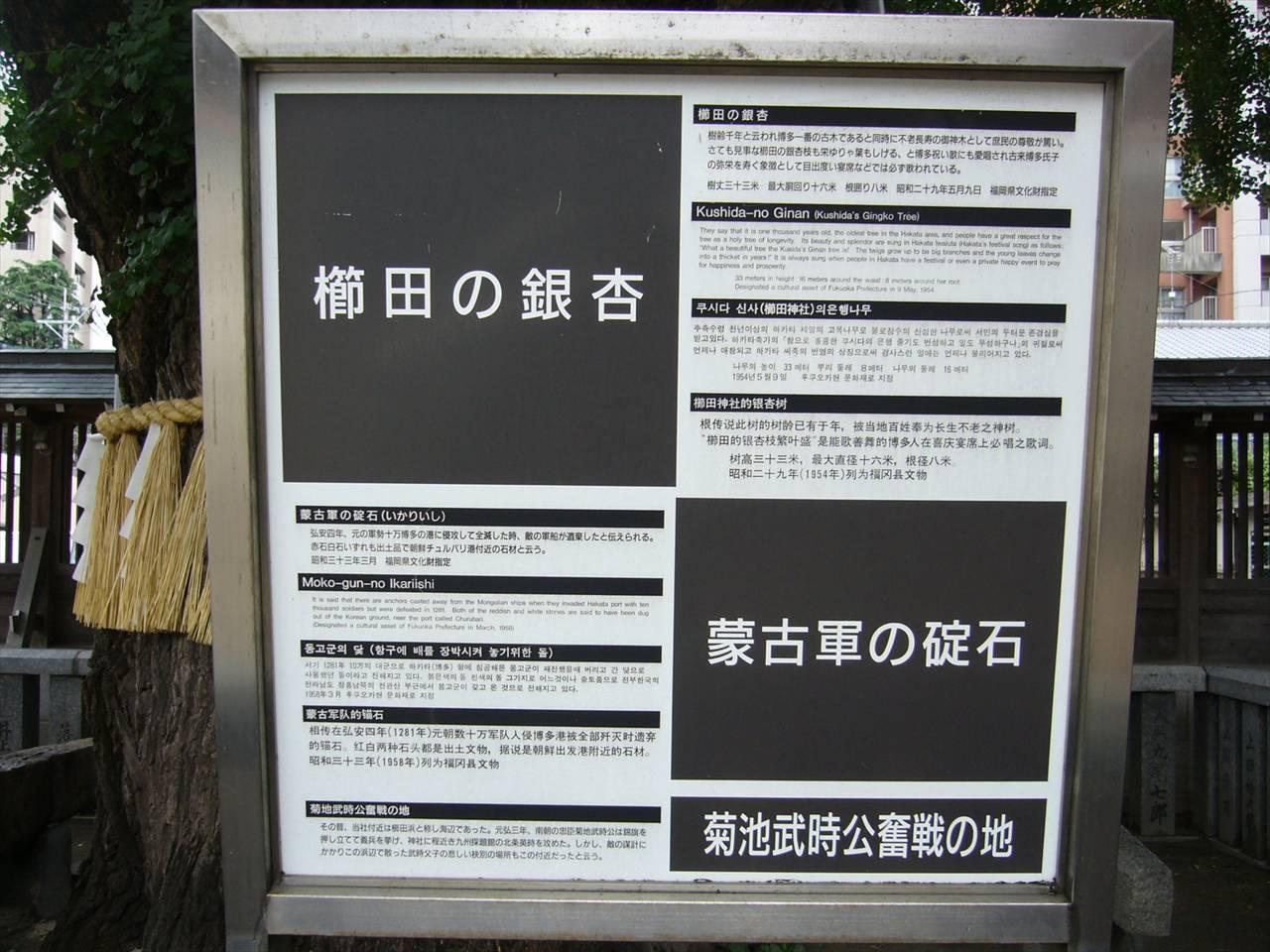 櫛田神社銀杏と碇石説明