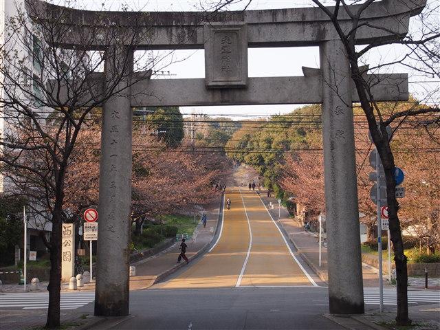 西公園桜2014-1