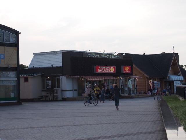 福岡タワー1-6