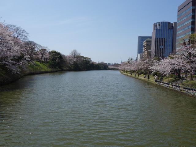 福岡城さくらまつり2015上之橋1
