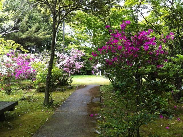 天拝山歴史自然公園12