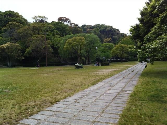 天拝山歴史自然公園6