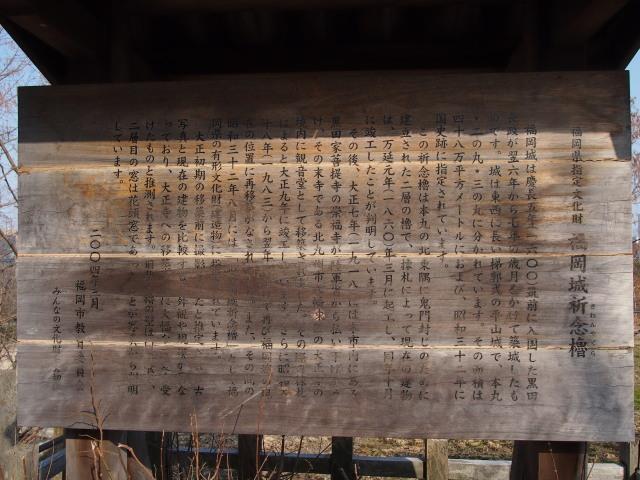 福岡城梅の花2014上4