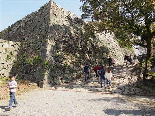 第5回 福岡城さくらまつり桜23