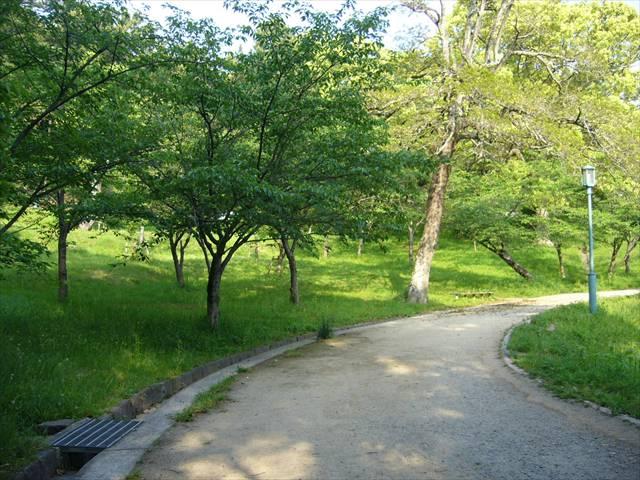 西公園43