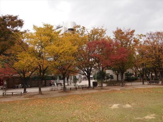 アクロス福岡11