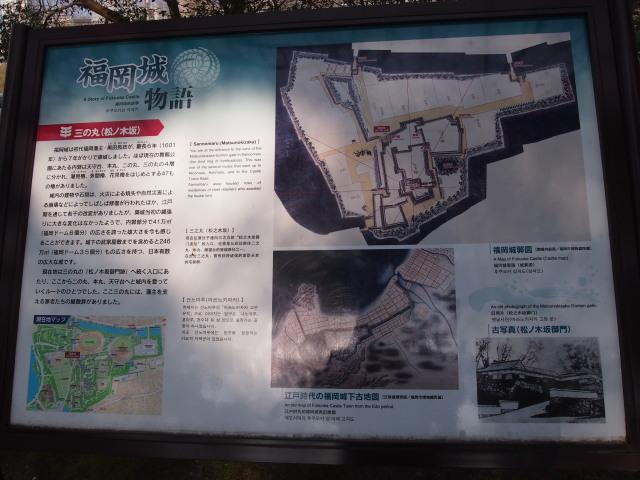 福岡城梅の花2014下0