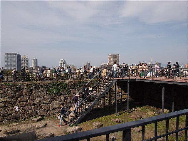 第5回 福岡城さくらまつり桜13
