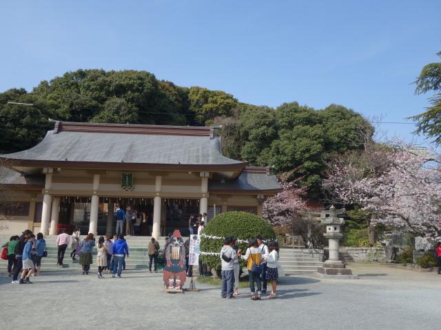 西公園桜2015光雲神社2