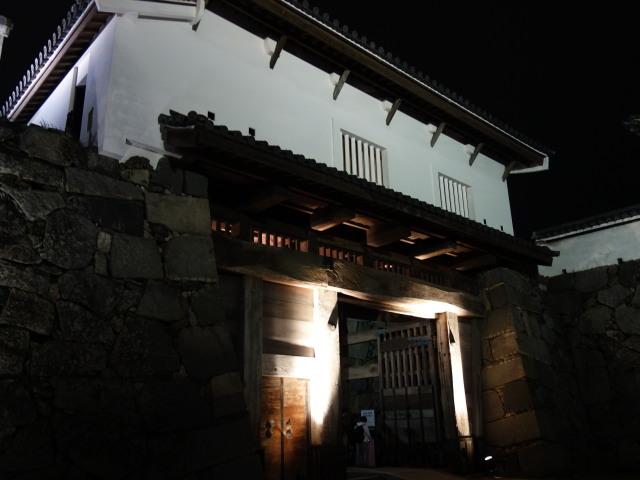 第7回 福岡城さくらまつり夜桜様子12