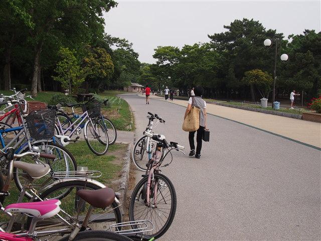 大濠公園スタバ5