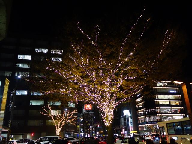 illumination-of-street-trees-%e8%a1%97%e8%b7%af%e6%a8%b9%e3%81%ae%e3%82%a4%e3%83%ab%e3%83%9f%e3%83%8d%e3%83%bc%e3%82%b7%e3%83%a7%e3%83%b33