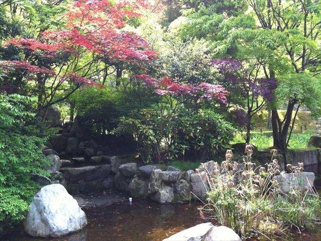 天拝山歴史自然公園11